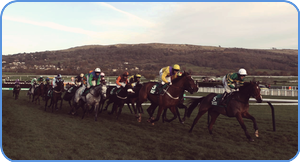 The Cheltenham Horse Race Picture