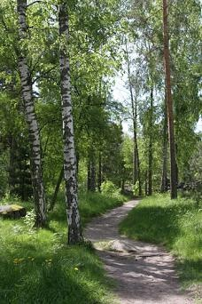 Finland is a beautifull country. You can play Finland Lotto there as well.